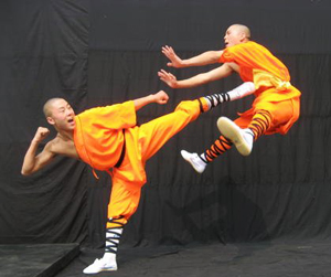 Chinese Kongfu Show, Beijing Guide, Beijing Travel