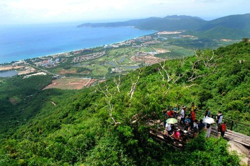 Ttropical Rainforest , Sanya Guide,Sanya Travel