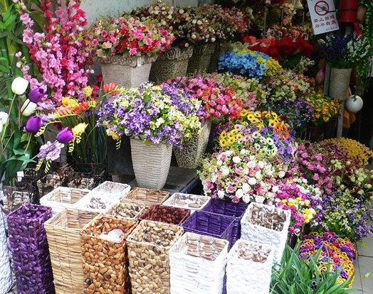 Nanning Bird and Flower Market, Nanning Guide,Nanning Travel