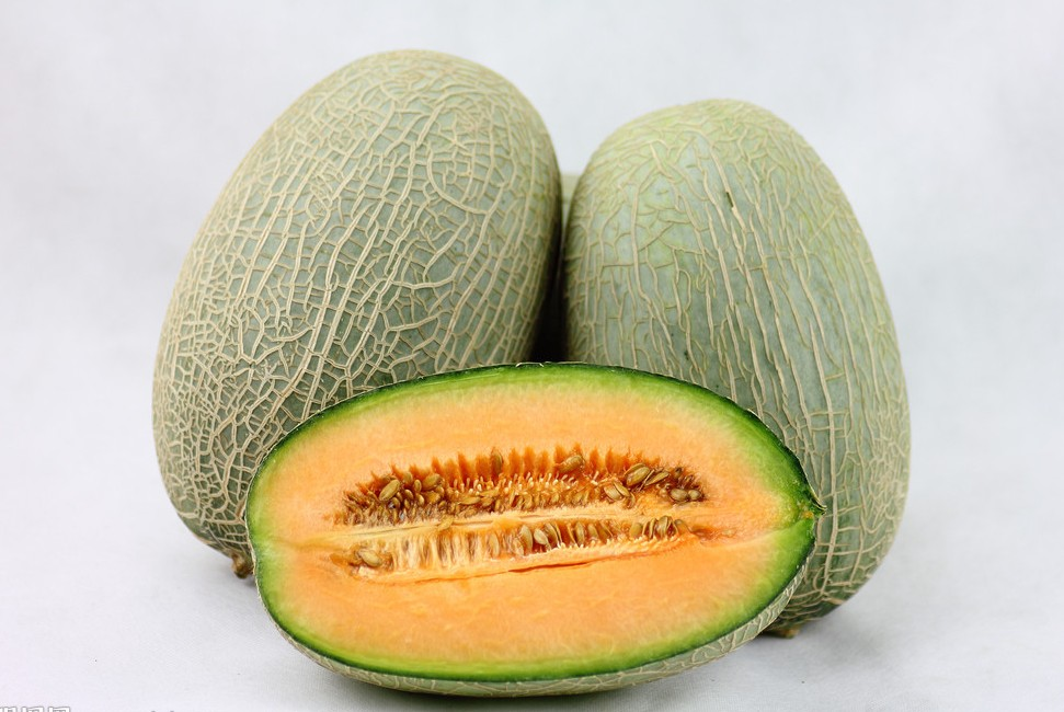 Hami Melon, Hotan Travel, Hotan Guide