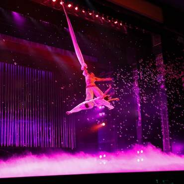 Beijing Night Tour-Bus Tour – Acrobatic Show