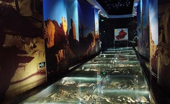 the-museum-of-xinjiang-uygar-autonomous-region2.jpg