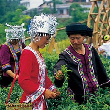 China Farming Deep Development Tour