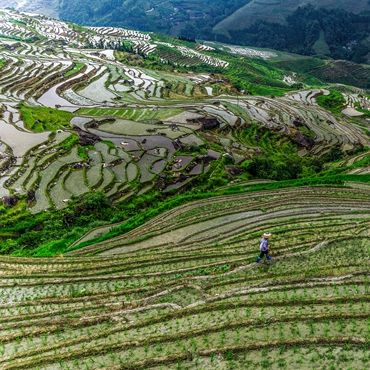 Students Farming Participation Tour and Others around Guilin and Yangshuo Featured Guilin Tours