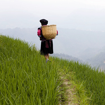 Two-day Rice Terrace & Minority Village Hike (from Xiaozhai to Ping'an)