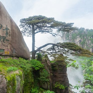 4-day Tour to Huangshan from Shanghai